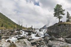 Rivier Shumi Multinskiyemeren De herfstlandschap van Altaibergen Royalty-vrije Stock Foto's