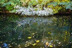 rivier in stedelijk park in de herfstdag royalty-vrije stock foto