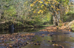 Rivier stroomopwaarts van springplanken in Uppermill Stock Foto's