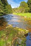 Rivier Vltava in het nationale park Sumava Stock Afbeelding