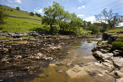 Rivier Wharfe - de Dallen van Yorkshire - Engeland Stock Foto's