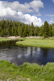 Rivier in Yellowstone Royalty-vrije Stock Afbeelding