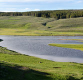 Rivier in Yellowstone Stock Afbeelding