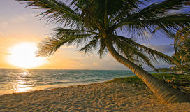 Riviera Maya Beach Sunrise Royalty Free Stock Images