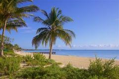 Riviera Maya , Mexico. Playa del Carmen and Riviera Maya beach, Mexico Stock Images