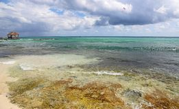 Riviera Maya. Playa del Carmen, Riviera Maya - Mexico royalty free stock images
