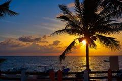Riviera Maya sunrise beach palm tree. At Mayan Mexico stock photos