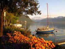 riviera schweizare Arkivbild
