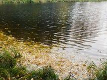 Rivierbank De herfst stock fotografie