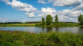 Rivierbank met vegetatie in een de zomer zonnige dag Royalty-vrije Stock Afbeelding