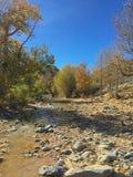 Rivierbed in de herfstkleuren De rivier van woestijnbergen altai Rusland stock afbeelding