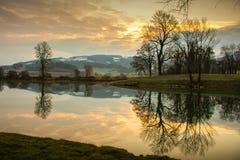 Rivierbezinning van bomen op een gouden zon royalty-vrije stock fotografie