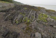 Riviere-du-Loup Пляж Стоковая Фотография RF