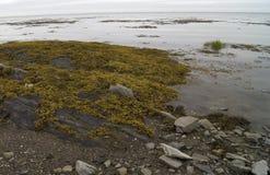 Riviere-du-Loup Beach Imágenes de archivo libres de regalías