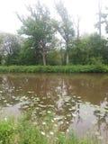 rivieren Royalty-vrije Stock Afbeeldingen