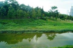 Rivieren en groen landschap Stock Afbeeldingen