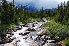 Rivieren in Rockies royalty-vrije stock foto's