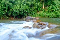 Rivieren in stromen die door de rotsen vloeien die in het bos zijn royalty-vrije stock afbeeldingen