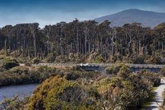 Rivierestuarium in Tauparikaka Marine Reserve, Haast, Nieuw Zeeland royalty-vrije stock fotografie