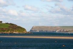 Rivierkameel, Cornwall, het UK stock foto