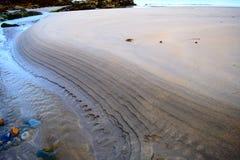 Rivierknipsel door een strand stock fotografie