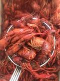 Rivierkreeften de Zuid- van Louisiane Royalty-vrije Stock Foto's