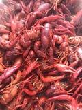 Rivierkreeften de Zuid- van Louisiane Fijne Cajun-Keuken Royalty-vrije Stock Afbeeldingen