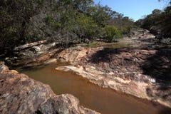 Rivierlandschap van Caatinga in Brazilië stock afbeelding