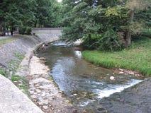 Riviermoravica, Duidelijk en koud water, Berg, Park, de Lente royalty-vrije stock fotografie