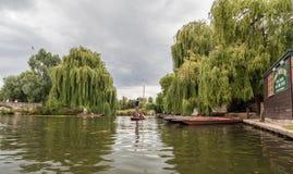 Riviernok Cambridge Engeland stock fotografie