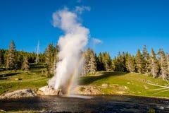 Rivieroevergeiser in het Nationale Park van Yellowstone Royalty-vrije Stock Fotografie