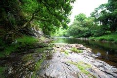 Rivierpijltje, het Nationale Park van Dartmoor, Devon, het UK stock afbeelding