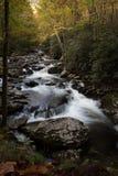 Rivieruitzicht van vlug stromend water over rotsen in een herfstberglandschap Stock Afbeeldingen