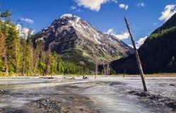 Riviervallei in bergen stock foto's