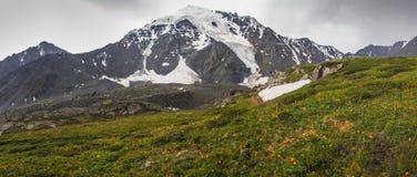 Riviervallei in bergen Stock Foto