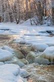 Rivière congelée traversant la forêt Images libres de droits