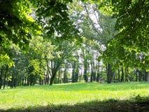 Rivoli -公园 免版税库存照片