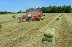 Rivoltando il fieno sull'azienda agricola Fotografia Stock Libera da Diritti