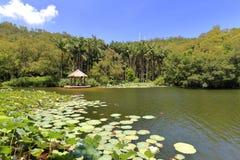 Rivolti il fieno il padiglione dal lago dell'amante dell'università di xiamen, l'adobe rgb Fotografia Stock