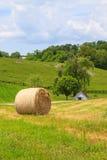Rivolti il fieno su un'erba e su una casa della molla nel paese Immagine Stock