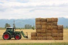 Rivolti il fieno il trattore che impila le balle di fieno su un grande mucchio Immagine Stock Libera da Diritti