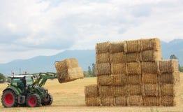 Rivolti il fieno il trattore che impila le balle di fieno su un grande mucchio Fotografia Stock Libera da Diritti