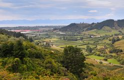 Riwaka Valley, New Zealand Stock Photos