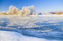 Riwer di inverno Fotografia Stock