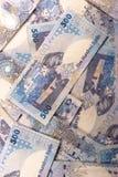 Riyals di Qatari Fotografie Stock Libere da Diritti