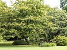 Riykugien-Garten, Tokyo Lizenzfreies Stockfoto