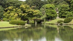 Riykugien trädgård, Tokyo Arkivbilder