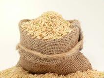 riz Photos libres de droits