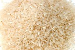 riz Photo libre de droits