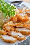 Riz appétissant de poulet de friture de la Thaïlande Photo libre de droits